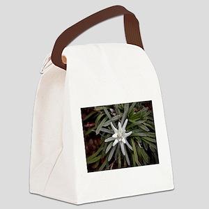 White Alpine Edelweiss Flower Canvas Lunch Bag