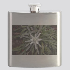 White Alpine Edelweiss Flower Flask