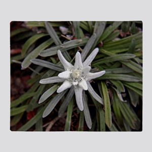 White Alpine Edelweiss Flower Throw Blanket