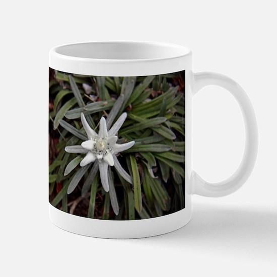 White Alpine Edelweiss Flower Mugs