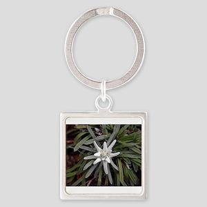 White Alpine Edelweiss Flower Keychains