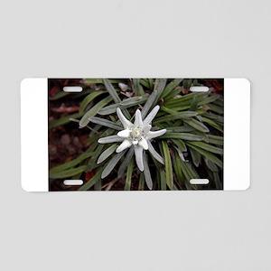 White Alpine Edelweiss Flow Aluminum License Plate