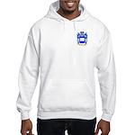 Jedras Hooded Sweatshirt
