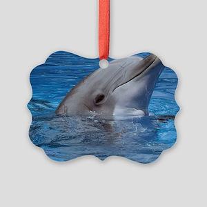 Dolphin Picture Ornament