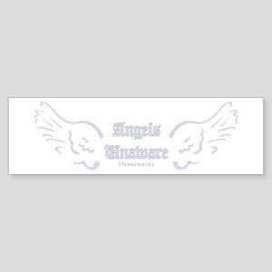 Blue Angels Unaware Bumper Sticker