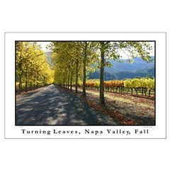 turning leaves, napa valley fall large posters