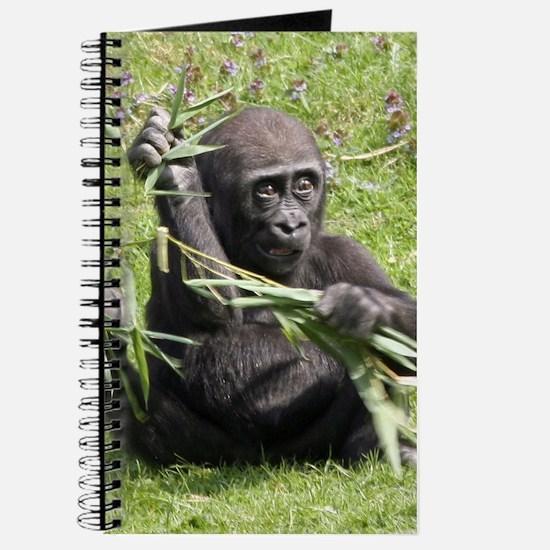 Lovely Gorilla Baby Journal