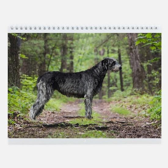 Irish Wolfhound Wall Calendar