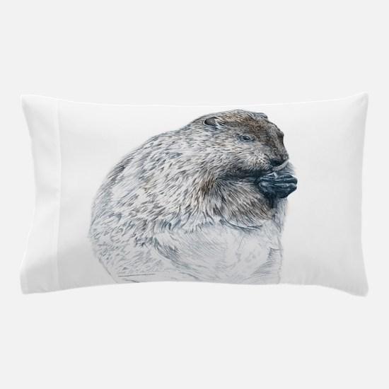 Unique Groundhog Pillow Case