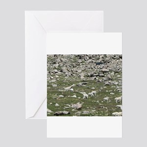 Mt. Evans Mountain Goats Greeting Cards