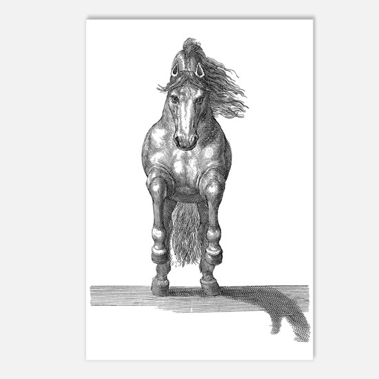 Charging Horse Postcards (package Of 8)