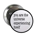 You Are The Universe 2.25