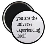 You Are The Universe Magnet