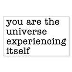 You Are The Universe Sticker (Rectangle 10 pk)