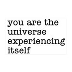 You Are The Universe 35x21 Wall Decal