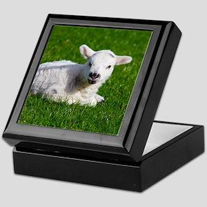 Baby lamb Keepsake Box