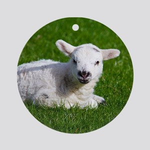 Baby lamb Ornament (Round)