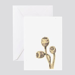 Botanical Poppies Greeting Card