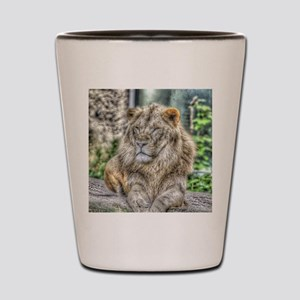 The Lion,painted Version Shot Glass