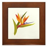 Bird of paradise Framed Tiles