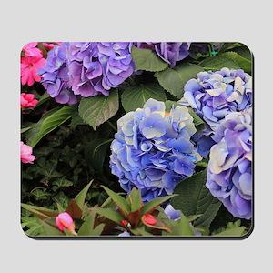 Purple Hydrangeas Mousepad