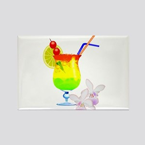 Tropcal Punch Luau Drink Magnets