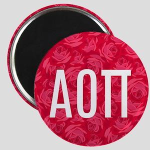 Alpha Omicron Pi Letters Magnet Magnets