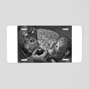 orangutans-sharing-an-apple Aluminum License Plate