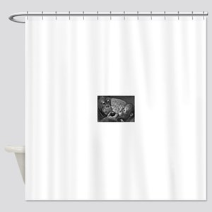 orangutans-sharing-an-apple Shower Curtain