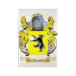 Jaspar Rectangle Magnet (10 pack)