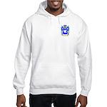 Jape Hooded Sweatshirt
