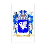 Jape Sticker (Rectangle)