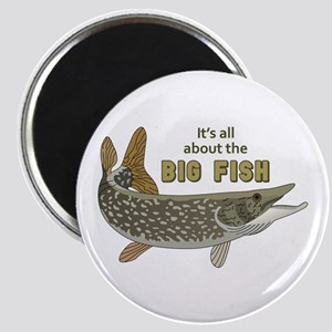 It's All About The Big Fish Magnets