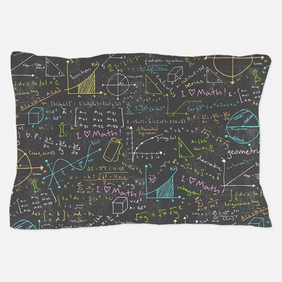 Math Lessons Pillow Case