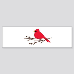 Cardinal Bird Branch Bumper Sticker