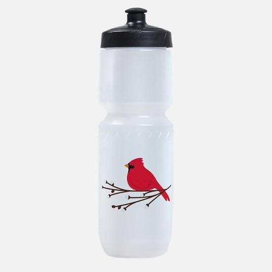 Cardinal Bird Branch Sports Bottle