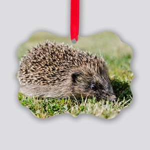 Hedgehog Picture Ornament
