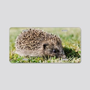 Hedgehog Aluminum License Plate