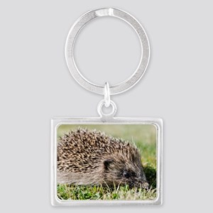Hedgehog Landscape Keychain
