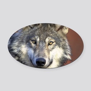 Wolf 024 Oval Car Magnet