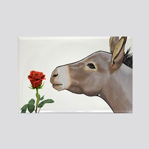 Mini donkey smelling a long stem red rose Magnets