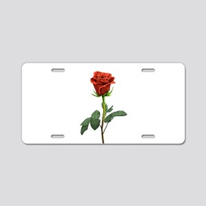 long stem red rose for valentines day Aluminum Lic