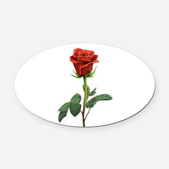 long stem red rose for valentines day Oval Car Mag