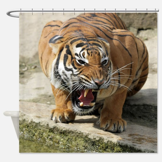 Tiger_2015_0156 Shower Curtain