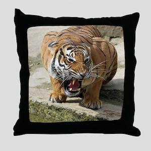 Tiger_2015_0156 Throw Pillow