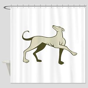 Greyhound Dog Marching Looking Up Cartoon Shower C