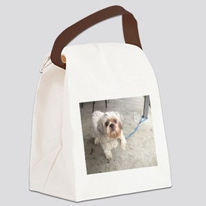 small dog at cafe mostly white Lh Canvas Lunch Bag