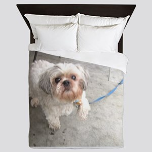 small dog at cafe mostly white Lhasa t Queen Duvet
