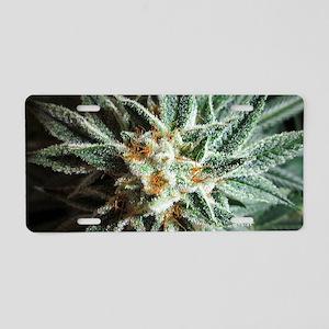 Kush Bud Aluminum License Plate