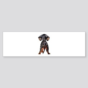 Dachshund Puppy Bumper Sticker